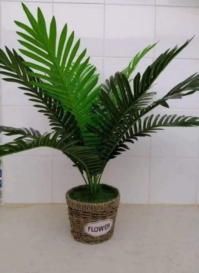 Plante-artificielle-PL3-tunisie