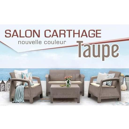 salon-jardin-carthage-4-places-rotin-moderne-tunisie-min